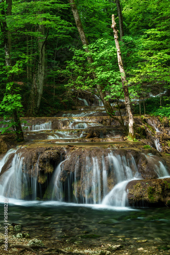green forest and waterfall - 161988230