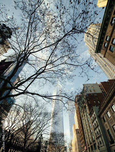 One World Trade Center and surrounding buildings viewed through tree branches be Poster