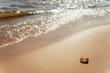 Береговая линия, пляж