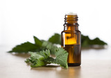 Essential oil with melissa and fresh melissa leaves