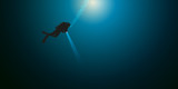 plongée - plongée sous-marine - plongeur - mer -seul - océan - sport - 162062463