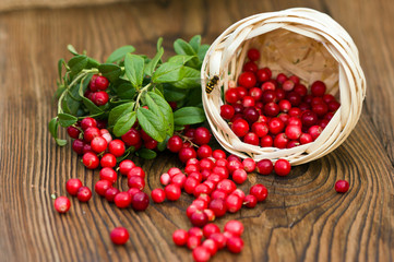 fresh ripe cranberries poured on wooden background from the basket