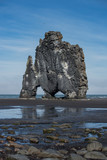 Hvitserkur Vertical dinosaur bassalt rock in Iceland