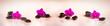 Flower arrangement - orchises on the bright background