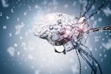 robot brain learning