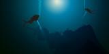 plongée - plongée sous-marine - épave - bateau - naufrage - plongeur - 162217854