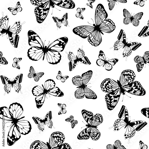 Poster Vlinders in Grunge monochrome butterfly background