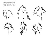 Set of hand drawn vector horses silhouettes © Ornavi