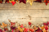 Fototapety Beautiful maple leaves on vintage wooden background, border design. vintage color tone - concept of autumn leaves in fall season background