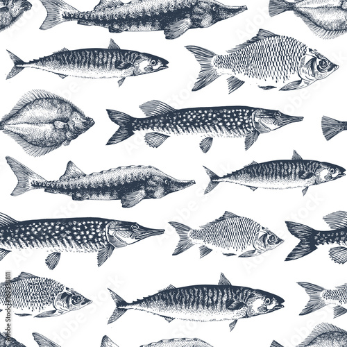 Fish vector seamless pattern for restaurants, emblem, vector image. Retro illustration - 162338811