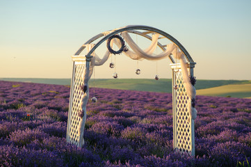Beautiful field of blooming lavender with wedding wood decoration