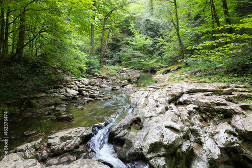 Mountain river waterfall in green forest