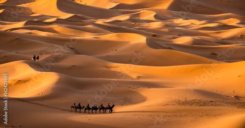 Fotobehang Marokko Caravan in the Sahara desert, Morocco