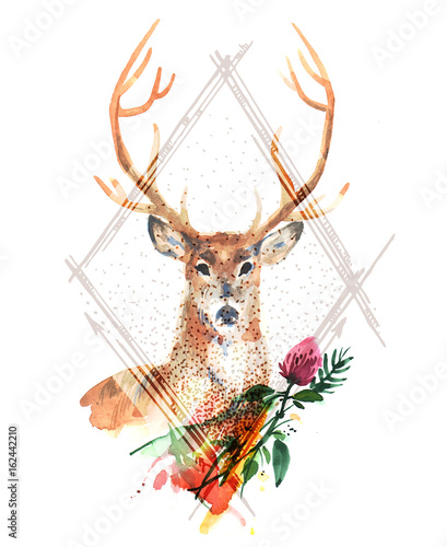 watercolor illustration deer - 162442210