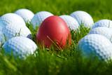 Integration-rotes Ei von Golfbällen umgeben - 162496019