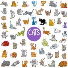 Cartoon Cat Characters Big Set Sticker