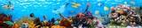 Vega Aqua Panoramik Resim - 162543232
