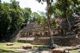 Copan, Mayan ruins in Honduras - 162553241