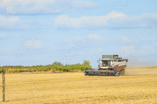 Combine harvester in the field Poster
