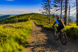 Mountain biking women riding on bike in summer mountains forest landscape. Woman cycling MTB flow trail track. Outdoor sport activity. - 162620684