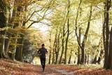 Mature Man Running Through Autumn Woodland - 162645620