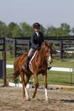 Girl trotting on chestnut horse - 162675651
