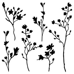 branches silhouette set