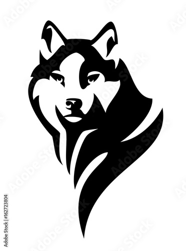 Fototapeta wolf (canis lupus) head en face black and white vector design