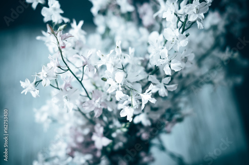 Field summer flowers with a blurred background in a vase. © prokop.photo