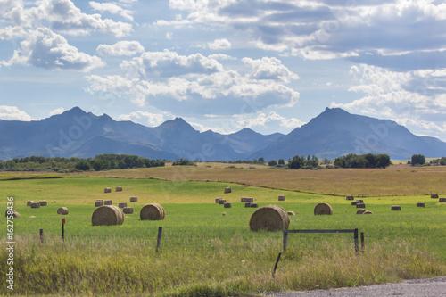 Foto op Canvas Pistache farm field with hay bales in