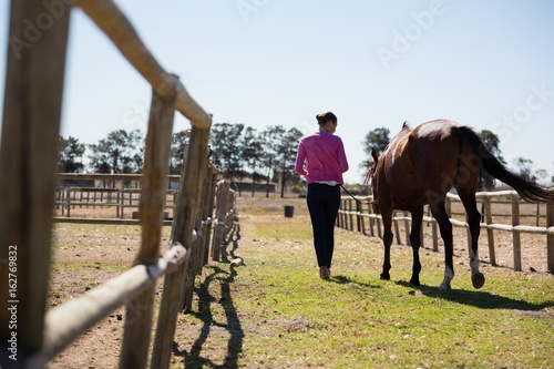 Rear view of woman walking with horse at ranch
