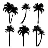 vector set of tropical palm tree silhouettes - 162810664
