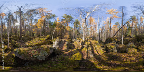 Poster Spherical panorama 360 degrees 180 old moss-covered boulders in a coniferous for