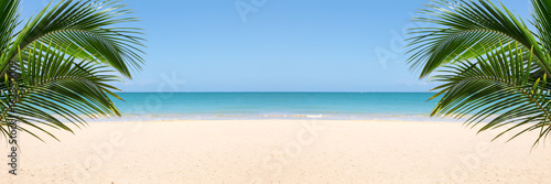 Sunny tropical beach panorama with copy space between palm trees - 162850009