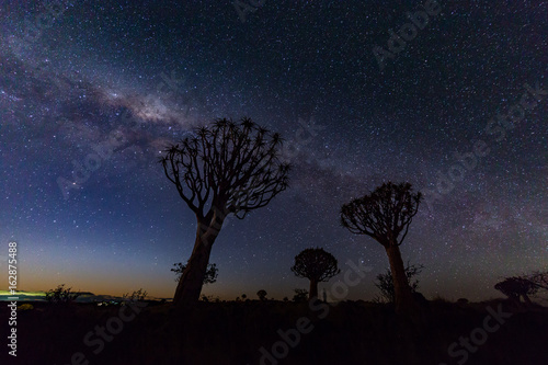 Aluminium Baobab Milky way with the Quiver tree forest Namibia