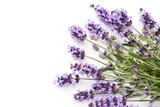 Lavender flowers. - 162901038