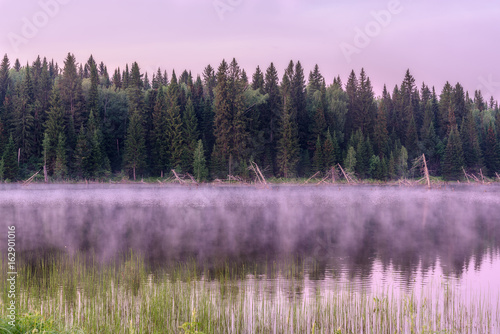 Aluminium Purper lake dawn pink fog forest