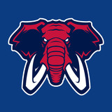 Elephant vector mascot. Head of African elephant. Emblem design for sport team. - 162903622