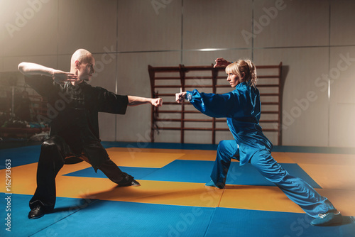 Male and female wushu fighters exercises indoor Poster