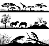 wild animals Giraffes, horses, iguanas
