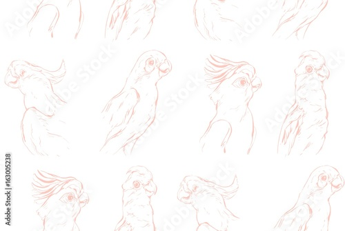 Hand drawn vector abstract textured graphic seamless pattern with exotic tropical parrots isolated on white background. - 163005238