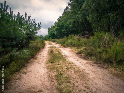 Moorland Landscapes