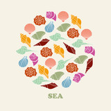 Sea shell vector illustration of color silhouettes