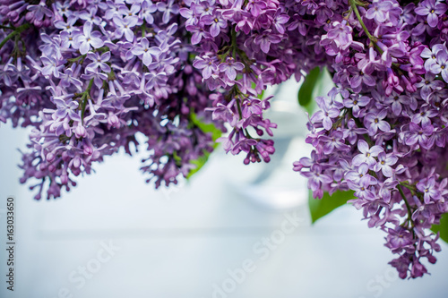 lilac flowers on white old wooden background