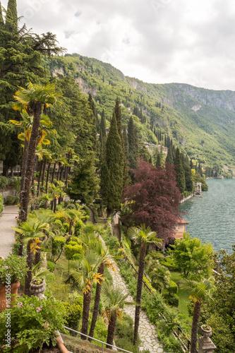 Jardin luxuriant au bord du lac