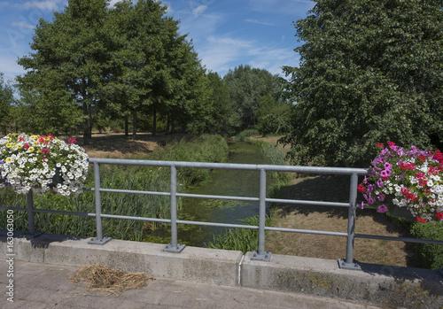 bridge over brook with flowers in countryside north of antwerp in belgium