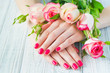 Hands with pink manicured fingernails and beautiful roses, beauty treatment concept - 163129469