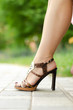 Woman legs in high heel shoes.