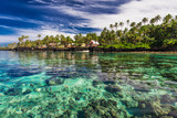 Coral reef lagoon with palm trees on the beach, south side of Upolu, Samoa