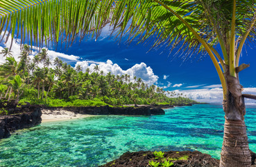 Beach with coral reef on south side of Upolu framed by palm leaves, Samoa
